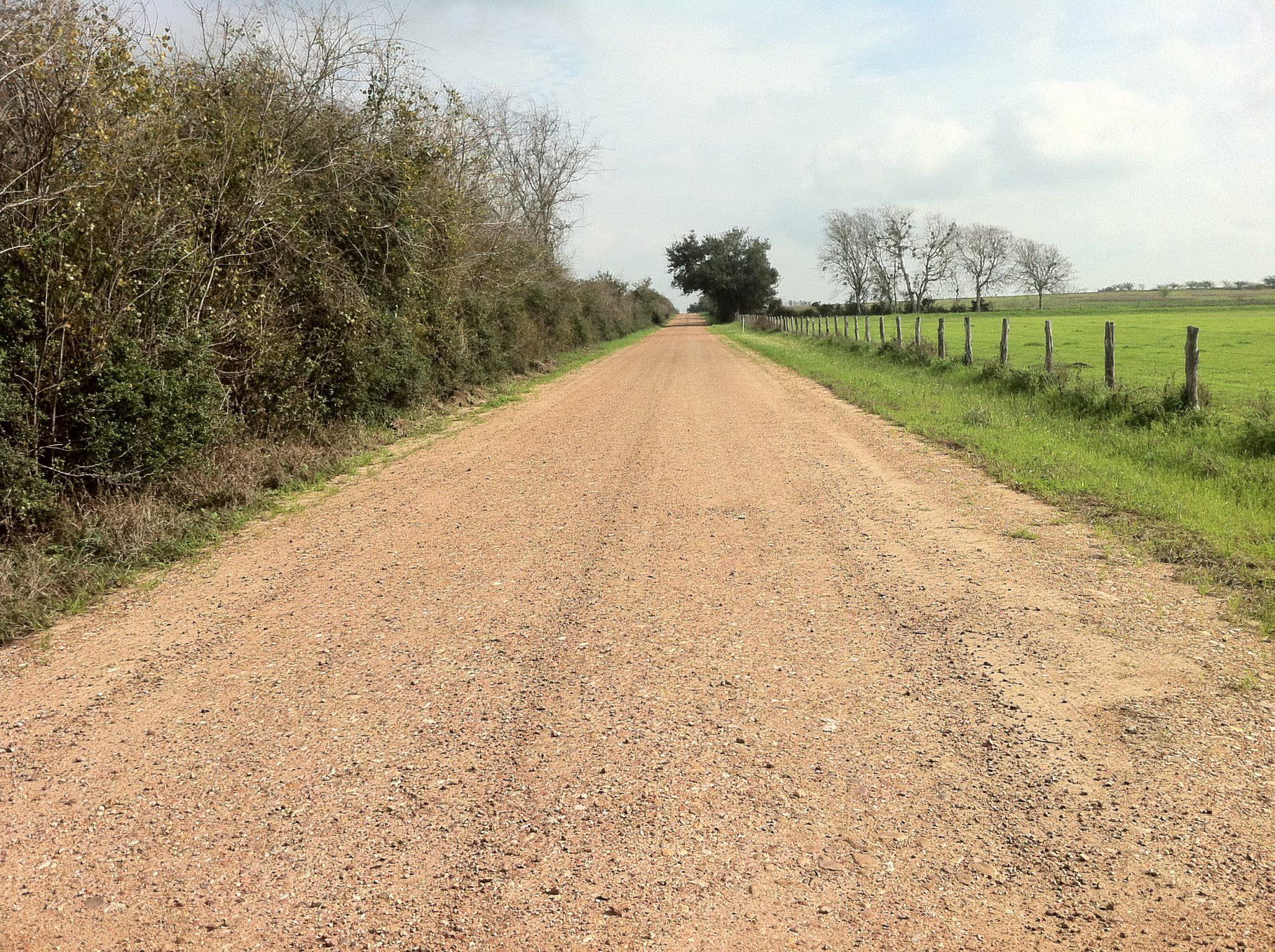 No m s asfalto en caminos rurales o forestales Ya no es necesario